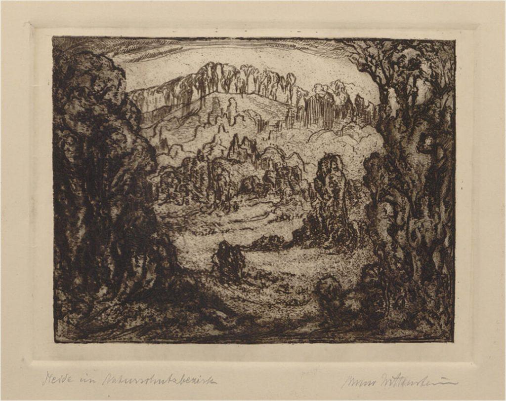 Heide im Naturschutzbezirk, Lithographie mit Autogramm (Quelle: Universitäts- und Landesbibliothek Münster, M. Apffelstaedt 6,032)